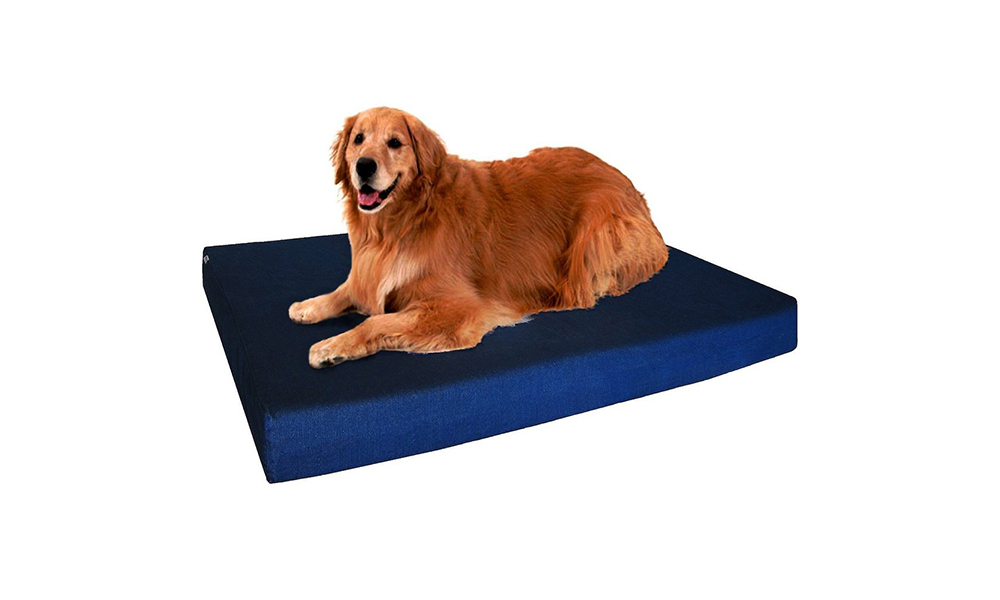 dog bed dogbed4 less