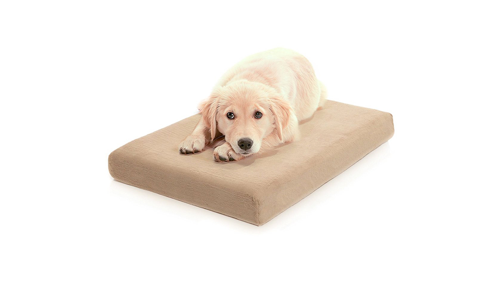 dog bed milliard