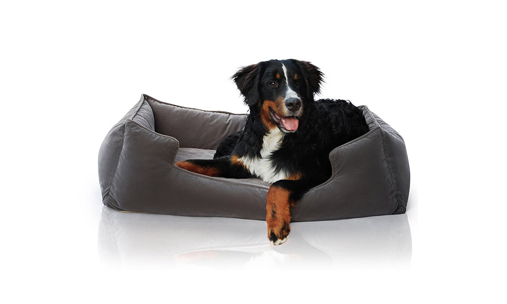 dog bed petsbao